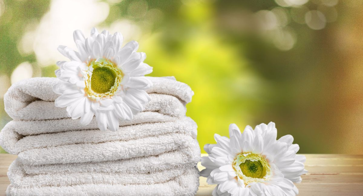 Commercial Towel Service